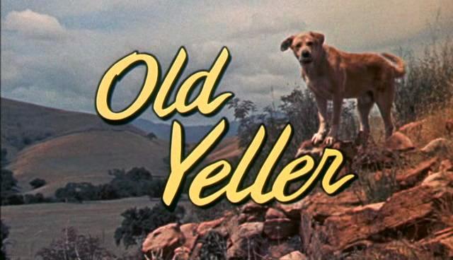 old-yeller-disneyscreencaps.com-.jpg