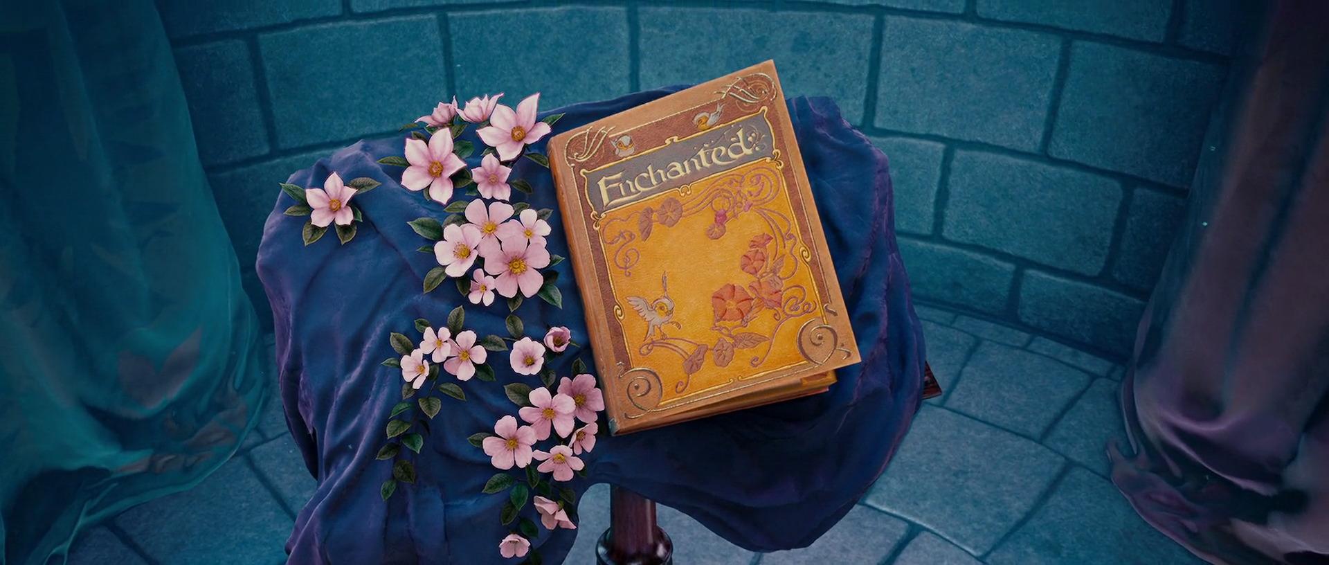 Enchanted libro